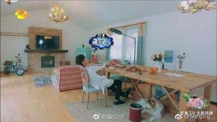 A picture of Zhang Ruoyun Tang Yixin that Tang Yixin Yan Meiku had to be irrefutable evidence of cohabitation