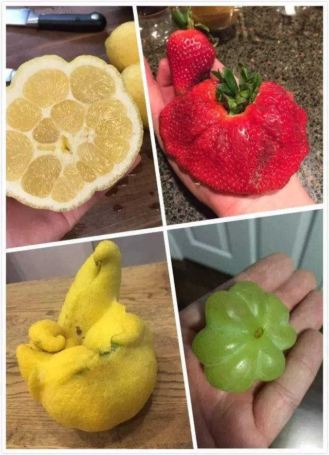6 kinds of fruits that make you feel numb! This stuff...... Can you still eat?