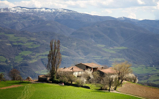 "Travel to Italy to experience ""farm tourism"""