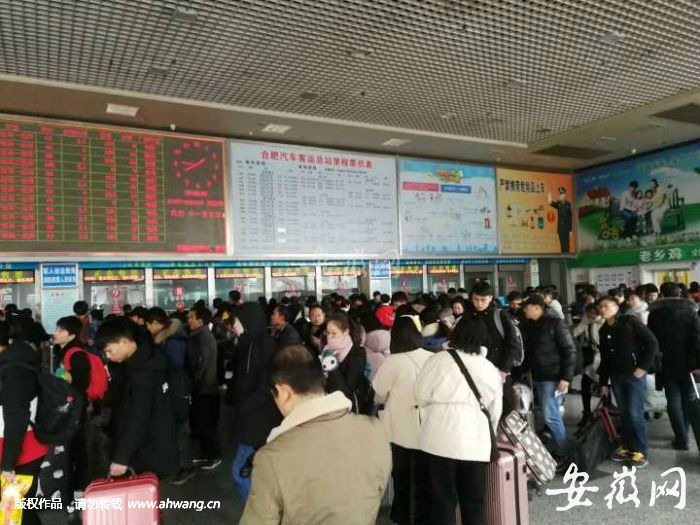 Hefei ushers in the peak of New Year's Day holiday (video)
