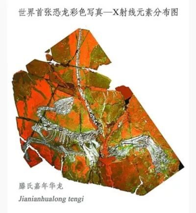The world's first color photo of dinosaurs was created in Dalian
