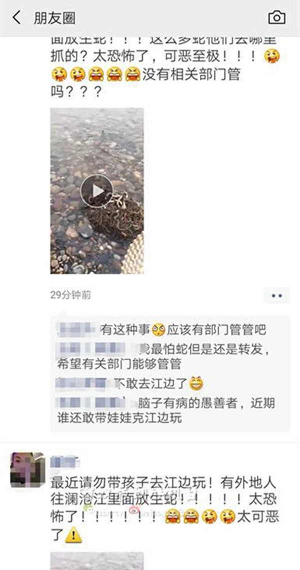Real estate dealers bought 40 kilograms of snakes and set them free. Jinghong Forest Police of Yunnan Province made an emergency search and arrest