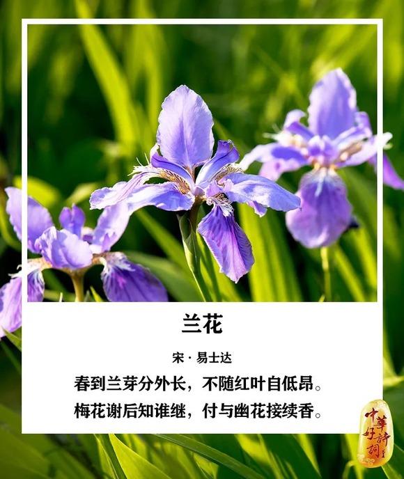 http://i1.go2yd.com/image.php?url=0P3g0ODVPG