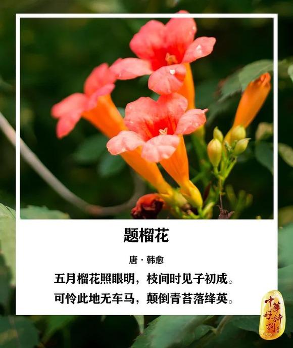 http://i1.go2yd.com/image.php?url=0P3g0ObKsg