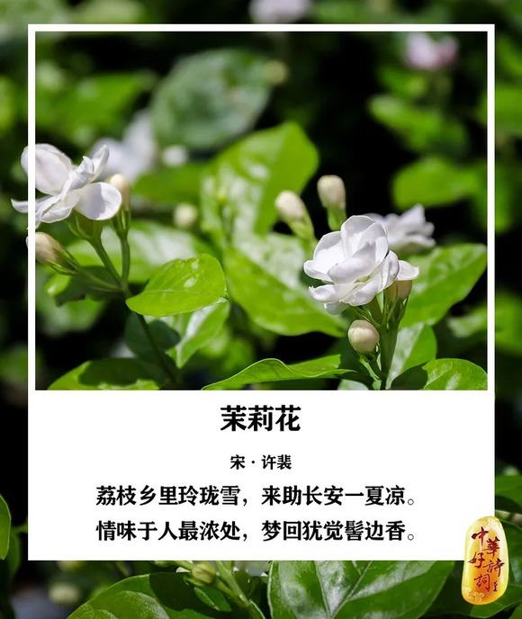 http://i1.go2yd.com/image.php?url=0P3g0Ong1I