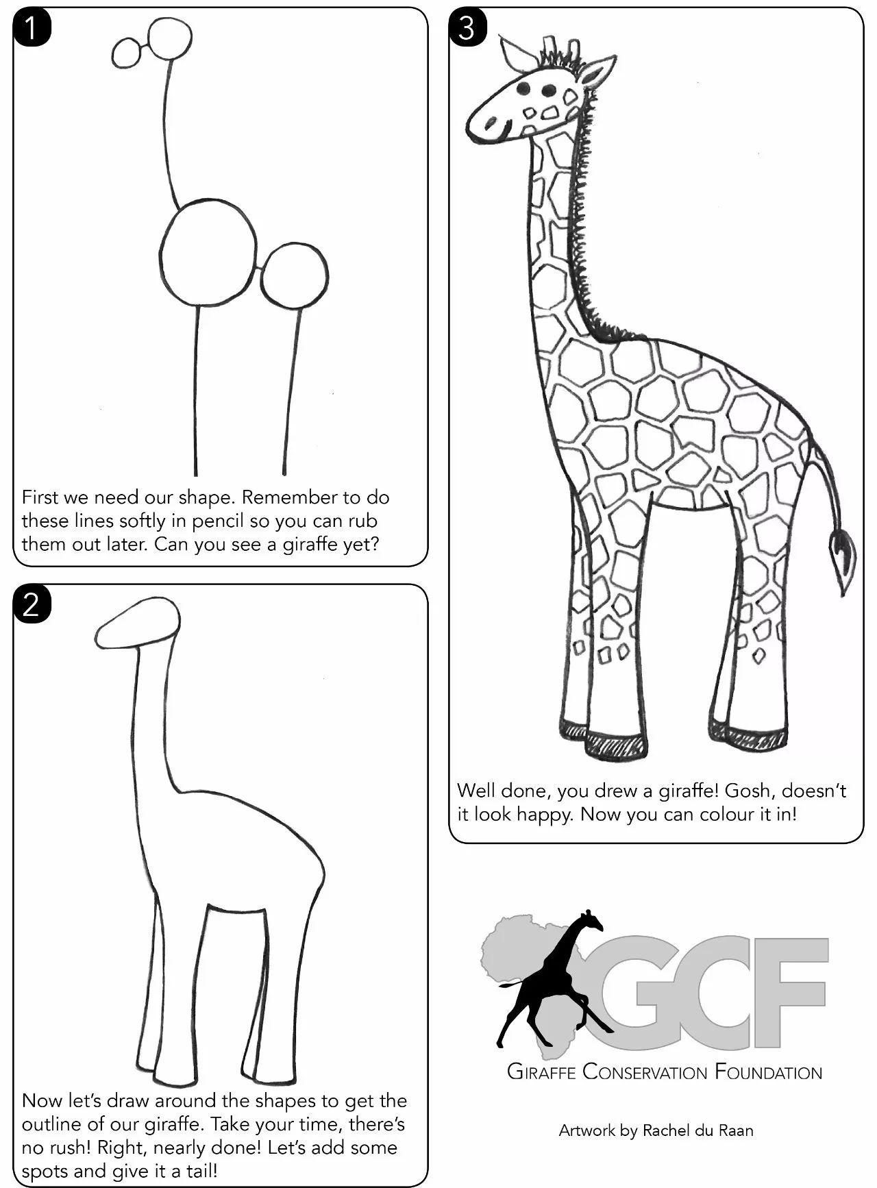 the giraffe u0027s neck is so long that it u0027s not meant to eat the leaves