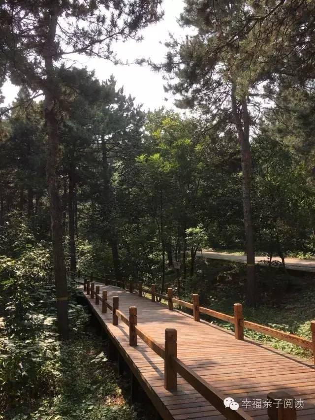 早教资:秋日,游西山国家森林公园