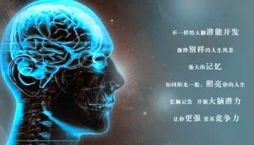 上海礼博全脑是真是假 全脑开发到底效果怎么
