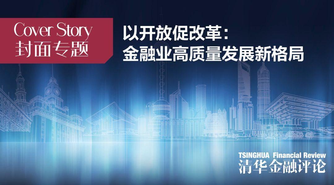 丁志杰:基于市场竞争视角的我国外汇市场发展历程与展望 | 封面专题