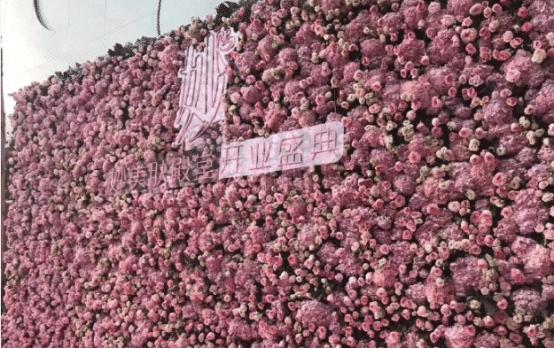 范冰冰帮美容院做宣传,李晨等人到场祝贺,这价格是认真的吗?