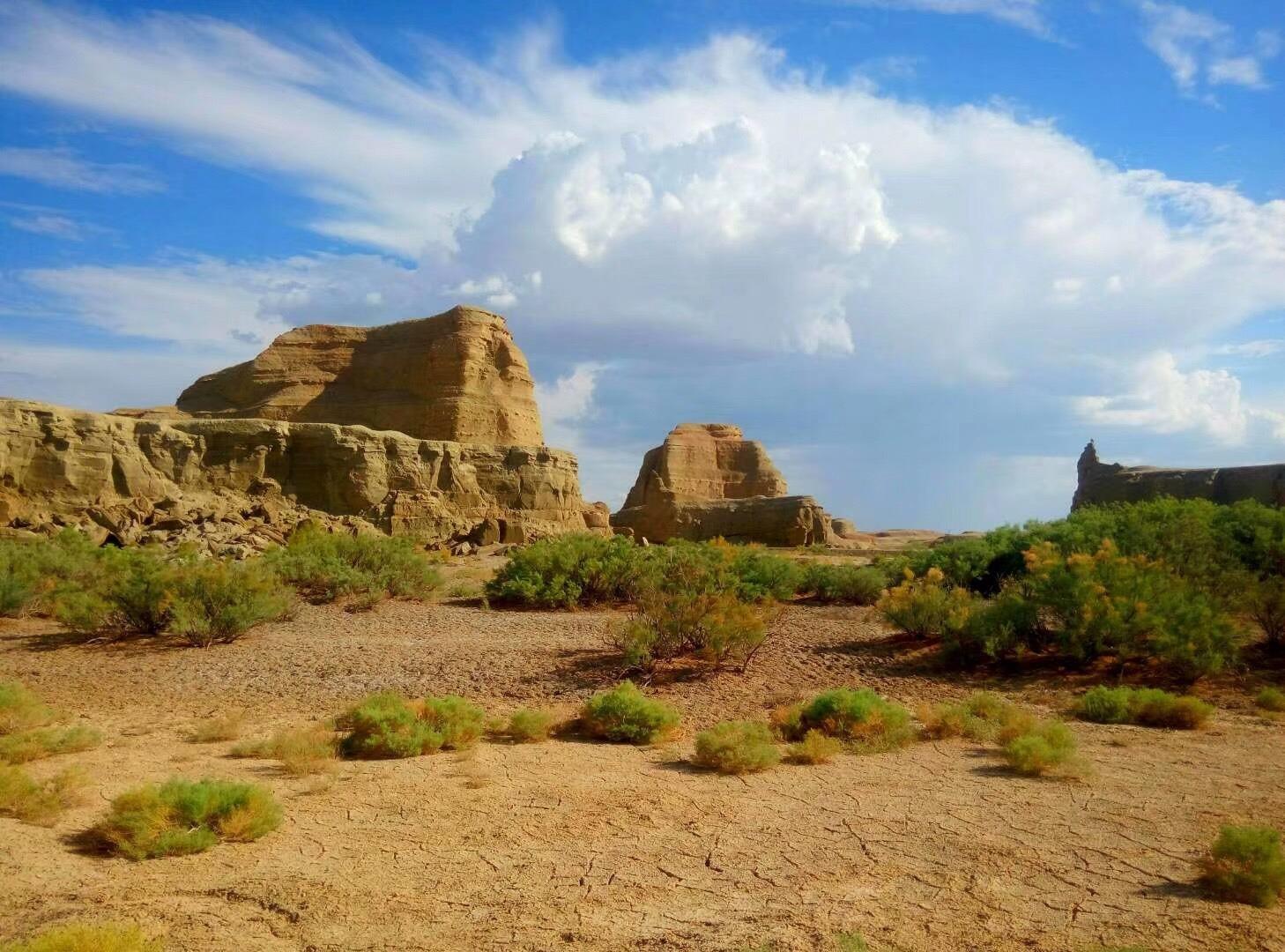 去新疆包車自駕游南疆與北疆如何選擇旅游線路?新疆旅行攻略