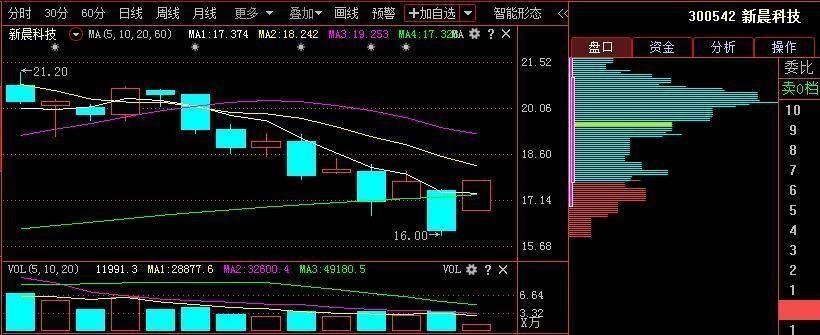 中国股市:明日A股或继续有报复性反弹