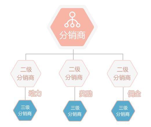 """微商分销""""3+3""""模式的特色功能有哪些?"""