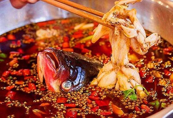 重庆美蛙鱼头火锅连锁加盟,厨司令——实力品牌不容你忽视!