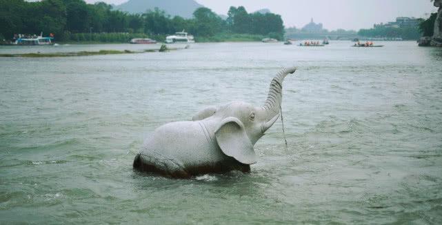 旅游團到桂林的必到打卡公園,游客慕名而來,掃 興而歸