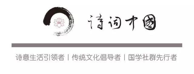清华北大复旦招生宣传片曝光:你有多努力,就有多特殊!