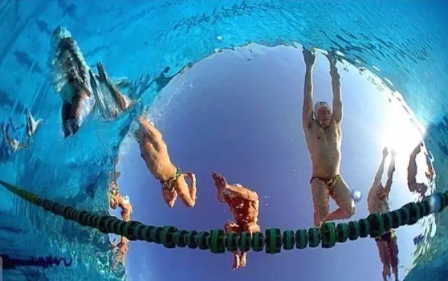 坚持游泳的人,说得太到位了!