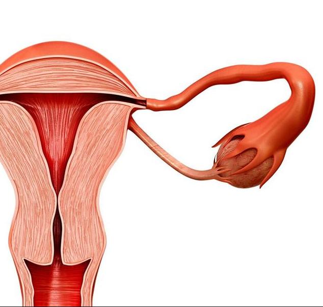 女子子宫肌瘤9.6公分,医生不敢手术:都怪一件事做的太多了