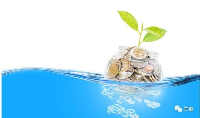 红杉资本印度公司推出独立种子基金Seed Fund I Ltd