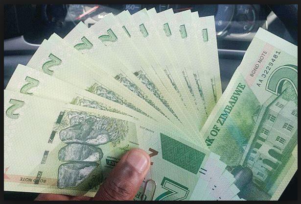 【津巴时讯】货币基金组织力挺津巴布韦重启本国货币