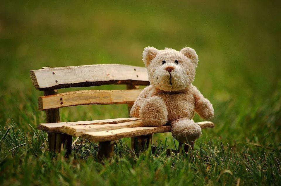 一具尸体,12只泰迪熊,和消失的价值10