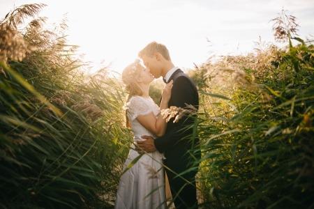 美文欣赏:一个人若是爱一个人,爱是藏不住的