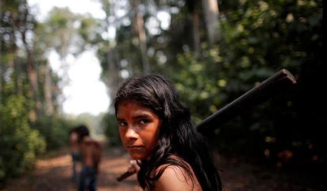 大火不断砍伐加剧,亚马逊土著部落拿起长弓棍棒:战至最后一滴血