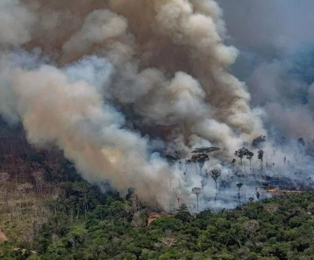 """世界""""第二个肺""""也在燃烧!卫星照片显示非洲山火堪比亚马逊"""