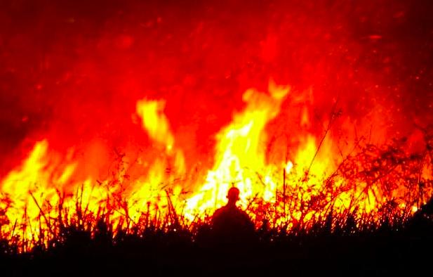 除了亚马逊,全球这些地方也在被大火袭击,