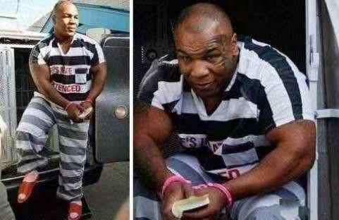 铁拳无敌的泰森在监狱为何不当刺头?专家的答案很现实