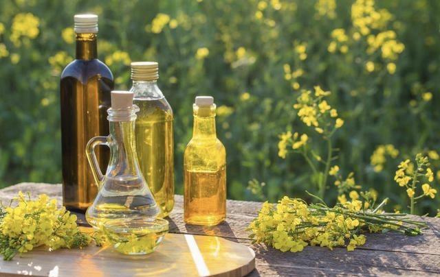 玉米油、花生油、茶仔油、肥猪肉油,到底哪种油最好?专家这么说