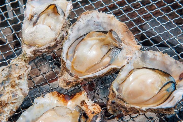 日本美食探索:广岛美食之旅-享受大阪烧和牡蛎!