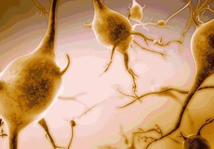 糖尿病周圍神經病變知識全解