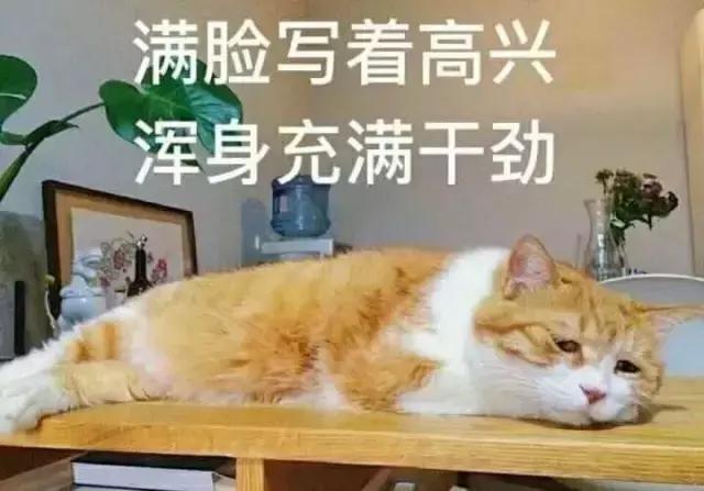 中医处方系统