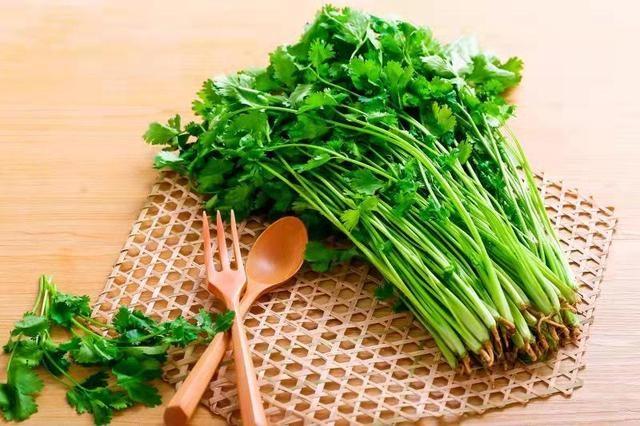 食用香菜好處多多,每天只需食用一點點,10個功效讓你百病不侵