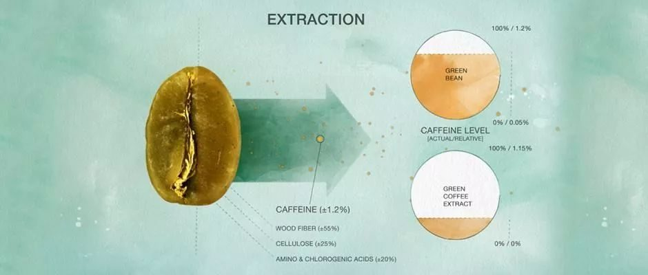 咖啡学院 精品咖啡 咖啡培训