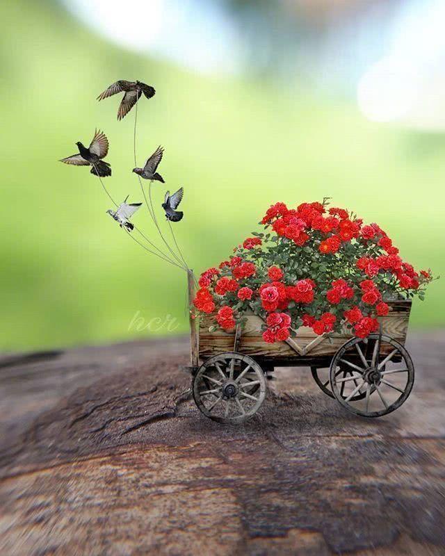 美文欣赏——《人生的春夏秋冬》