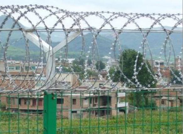 監獄的鐵絲網連只麻雀都飛不進去,為何偏偏飛進去了新冠病毒?