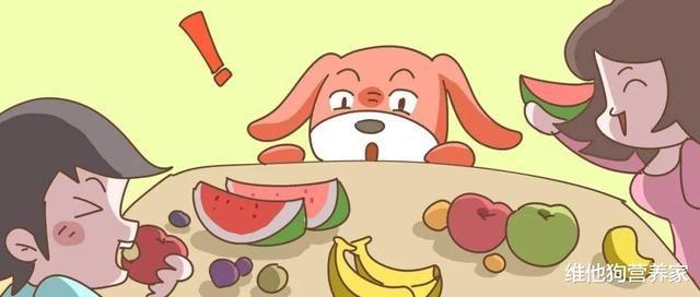 """水果代餐,減肥不成反惹脂肪肝?打破水果的甜蜜""""謊言"""""""