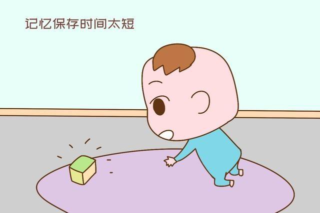 """孩子三岁前的记忆会消失,趁着不记事""""玩""""他?别想错了"""