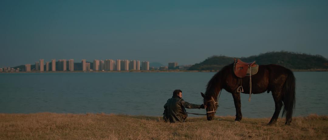 《出走的马蹄》:原来澳门永利官网天上的飞鸟也羡慕乡间的