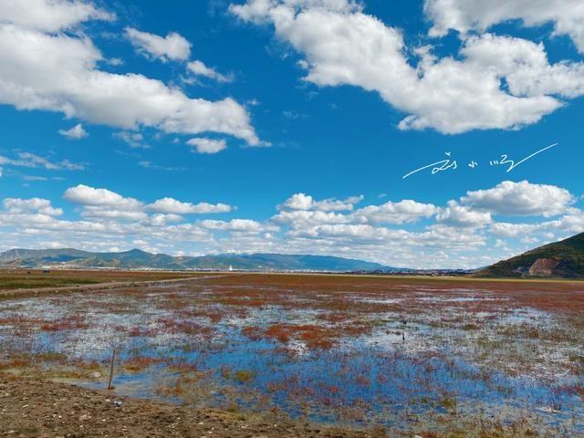 """雲南香格里拉有一個""""奇特""""的景區,明明是草原,卻叫""""納帕海"""""""