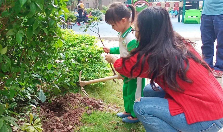 最是一年春光好,龙光社区植树添绿正当时