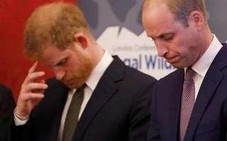 英國王室基因跑偏,齙牙和禿頂魔咒難打破,問題到底出在誰身上