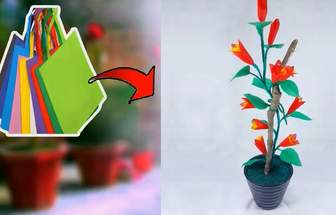 過氣環保袋DIY一盆美麗花卉盆栽