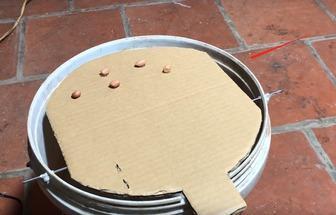 用塑料桶制作的捕鼠器