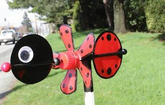 如何用塑料瓶DIY一個有趣的蜜蜂風車