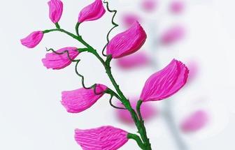 教你用皺紋紙DIY甜豌豆花