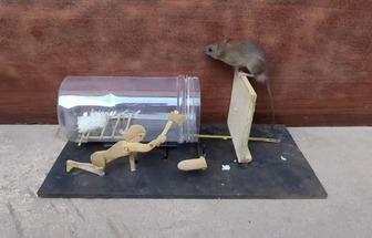 廢物利用制作超逗的捕鼠器