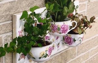 教你利用碎茶杯改造創意小花盆